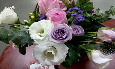 圣元电器办公室盛开的鲜花