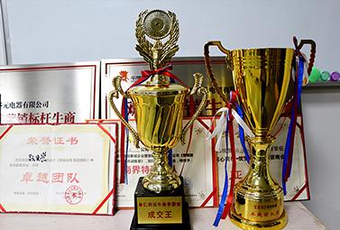 圣元电器团队荣誉奖杯